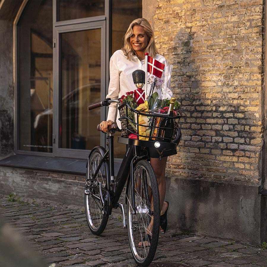 Danish Ebike STROEM City W Model