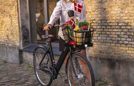 Danish Ebike STROEM City W Black