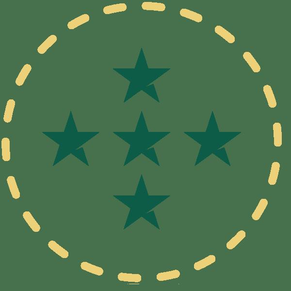 ICON quality stars