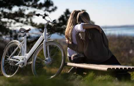 Friends ebike Stroem Bike